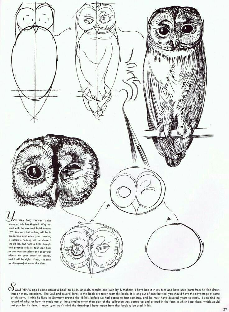 Pin by leigh on bff in 2018 pinterest dessin art dessin and art - Dessin mouton ...
