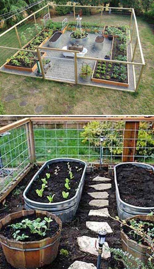 Photo of 23 Gärtnertipps für einen erfolgreichen ersten Gemüsegarten.