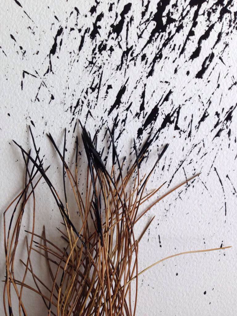 Dried Grass Drawing Close Up Crafts Drawing