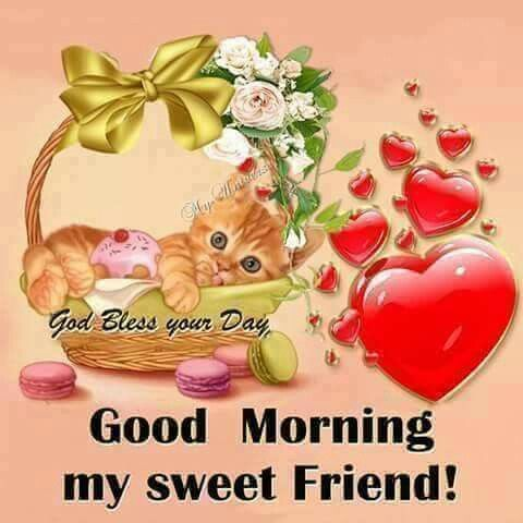 Good Morning My Sweet Friend Morning Good Morning Morning Quotes Good Morning Good Morning Quotes Cute Good Morning Good Night Friends