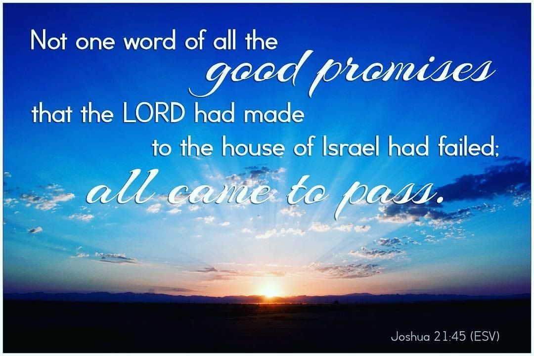 God S Promises Are True He Is Faithful We Live In A Fallen World Full Of Deception But In The Midst God Never Fails Verse Of The Day Bible Verse For Today