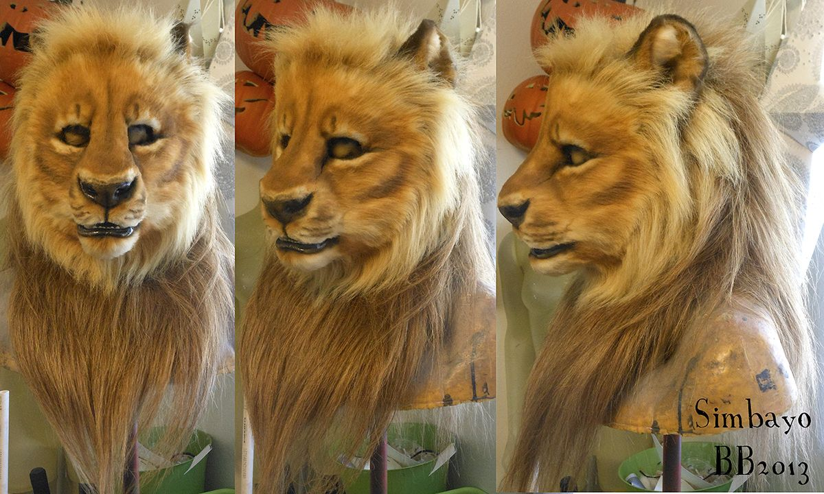 Image Result For Realistic Lion Bodysuit Lion Pinterest Lion