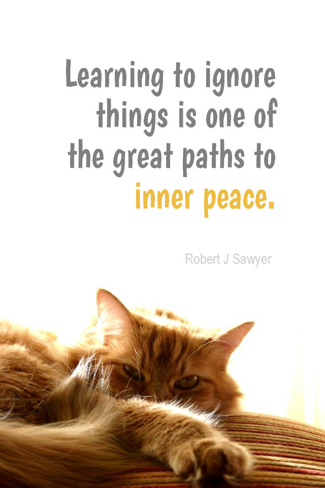 Daily Quotation for August 26, 2014 #quote #quoteoftheday     Learning to ignore things is one of the great paths to inner peace. - Robert J Sawyer