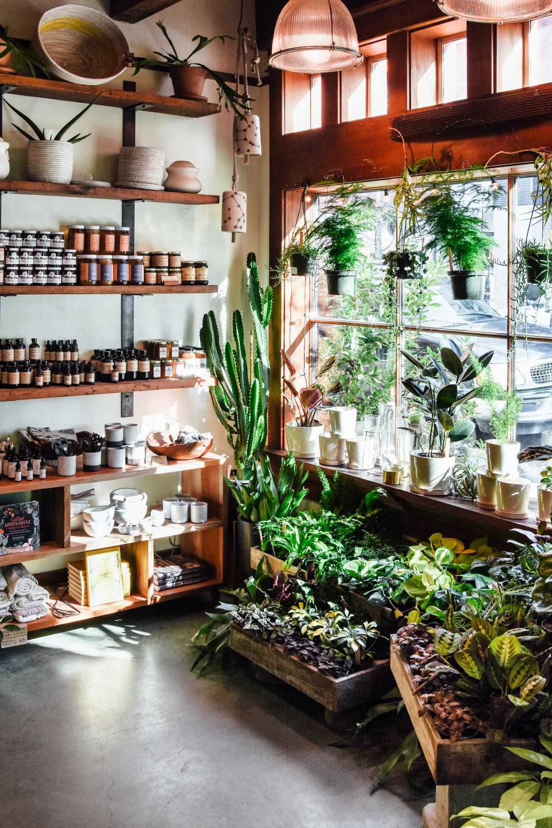 faa90255d98e Calling all plant lovers: Bring the outside in with greenery galore from  this Portland-based specialty nursery.