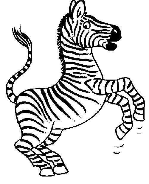 30 Desenhos De Zebra Para Pintar Colorindo Org Com Imagens