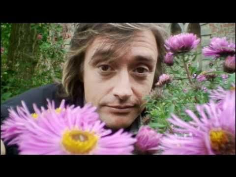 ▶ Bee Flight, Facts about how bees fly - YouTube