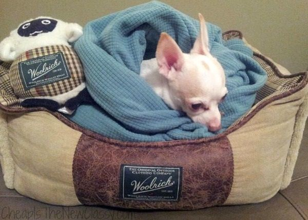 Woolrich Home Pet Beds Review Pet Beds Woolrich Pets