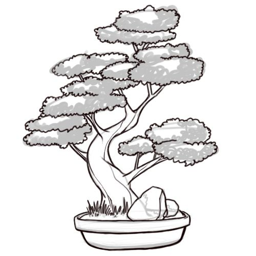 How To Draw A Bonsai Tree Tree Drawing Bonsai Art Bonsai Tree Painting