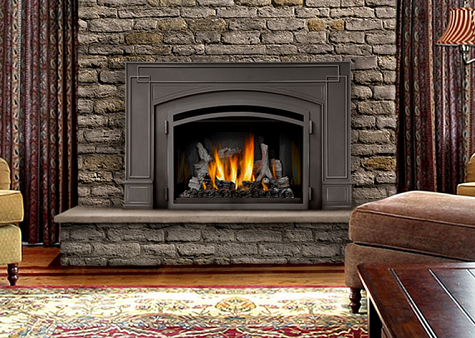 Gas Fireplaces Napoleon Gas Fireplace Fireplace Inserts Wood