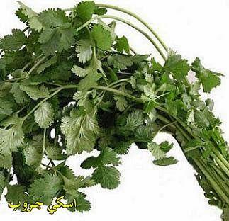 الكزبرة و فوائدها الرائعة الاسم العلمي للكزبرة Coriander Sativum Http Ascii Group Blogspot Com 2014 08 Coriander Sativum Ht Thai Cooking Planting Herbs Herbs
