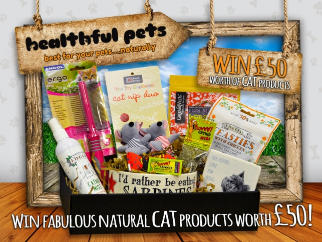 Finished Win A Gift Box For Your Cat Worth £50 (With
