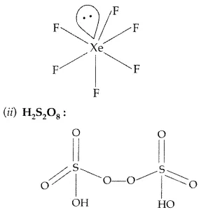 Important Questions for Class 12 Chemistry Chapter 7 The p