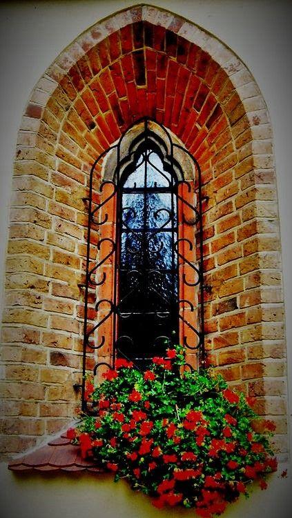 Cool Window Window Architecture Windows And Doors Front Doors With Windows