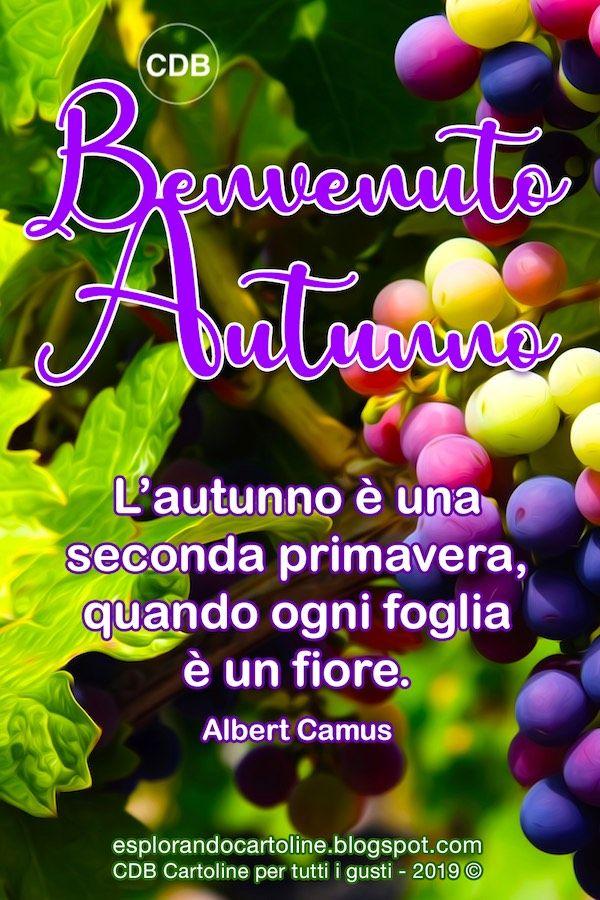 Cdb Cartoline Per Tutti I Gusti Cartolina Benvenuto Autunno L Autunno Autunno Cartoline Buongiorno Immagini