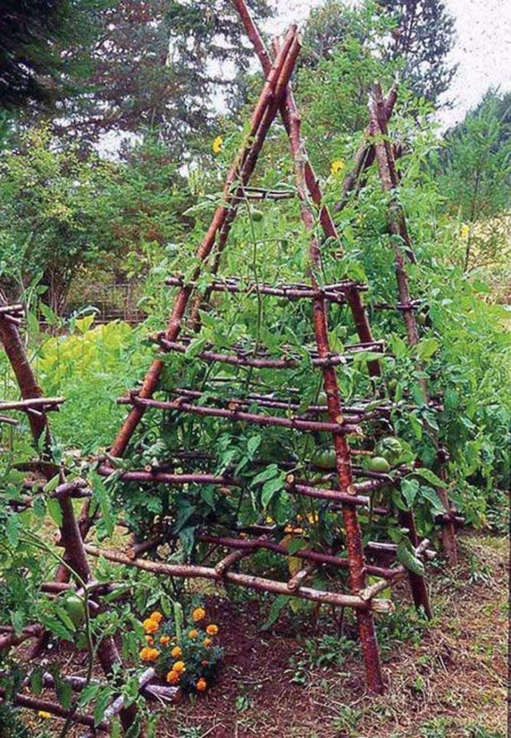 Most Popular Kitchen Garden Design Ideas 9   Gemüsegarten, Garten ...