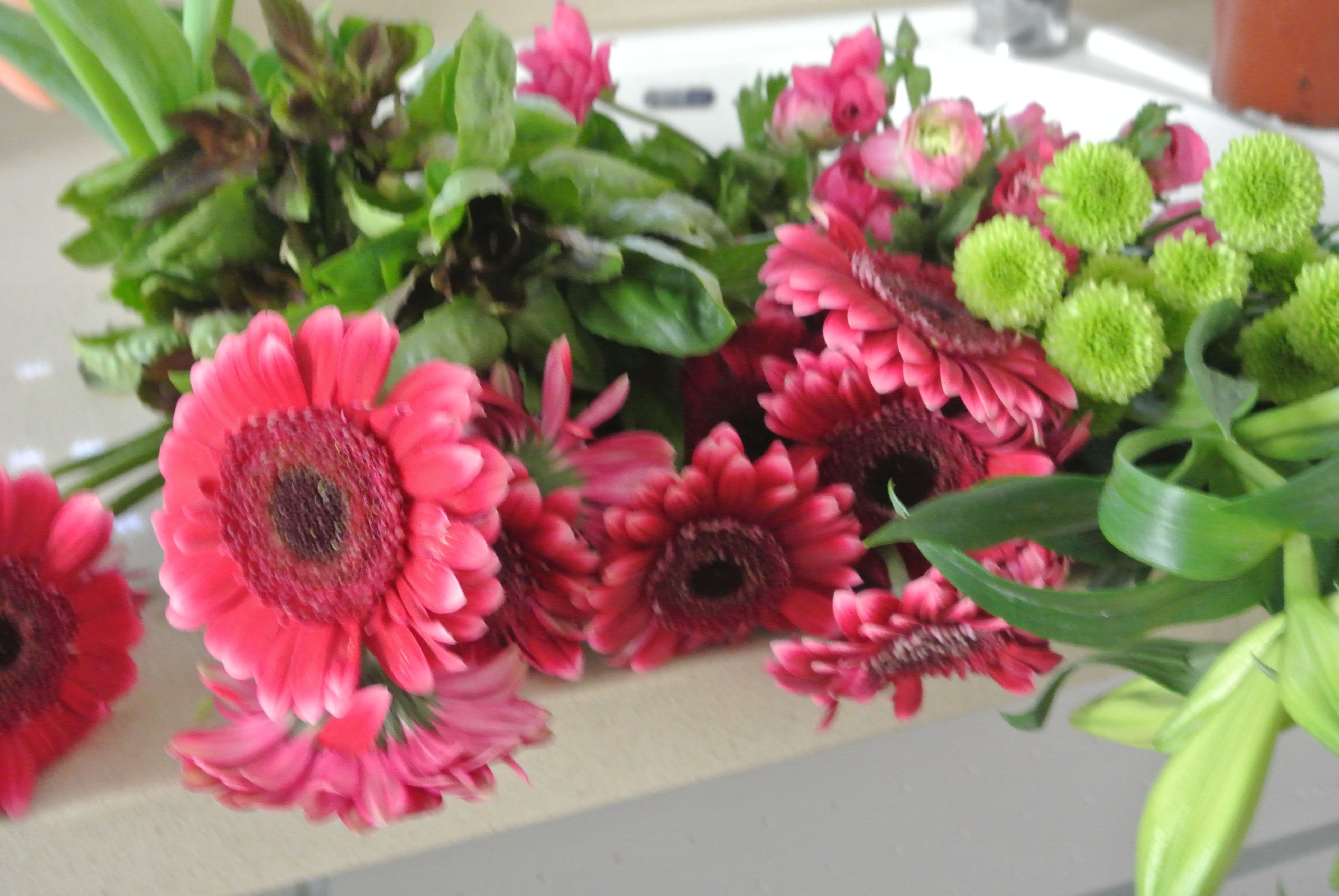 Flowers Cooling in Sink