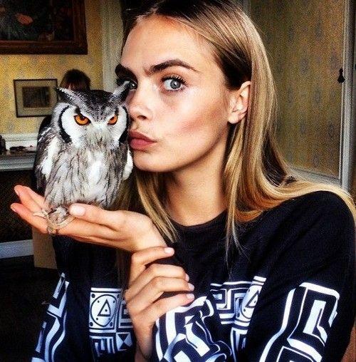 #caradelevingne Amazing owl photo with my favorite model.