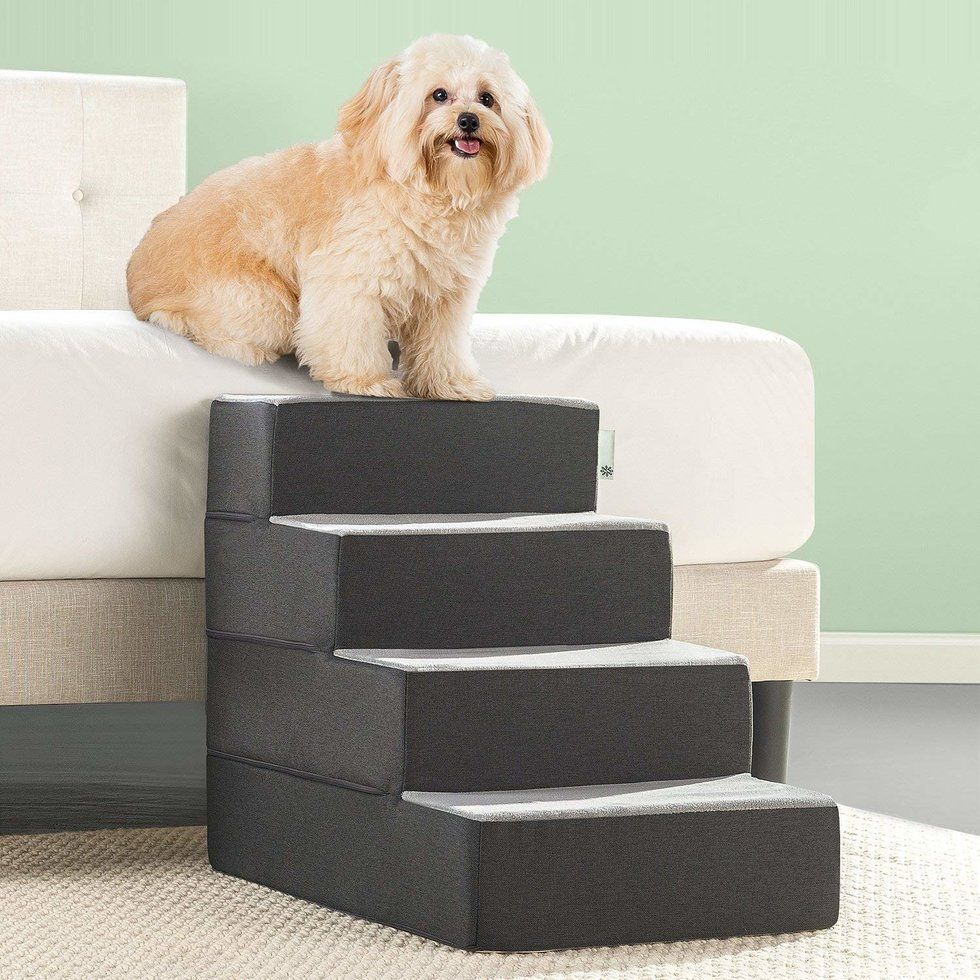 9 Things All Elephant Lovers Need Pet stairs, Dog stairs