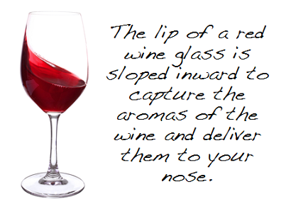 Fun Wine Facts