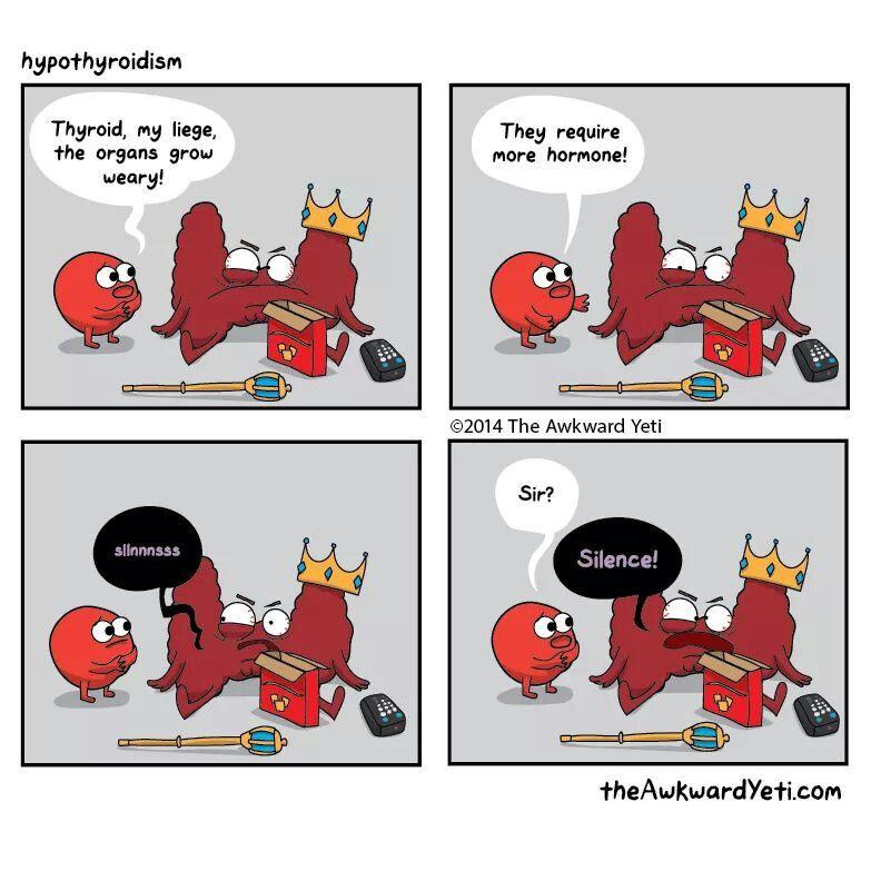 Awkward yeti cartoons