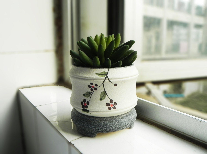 Ceramic plant pot indoor gardening container succulent