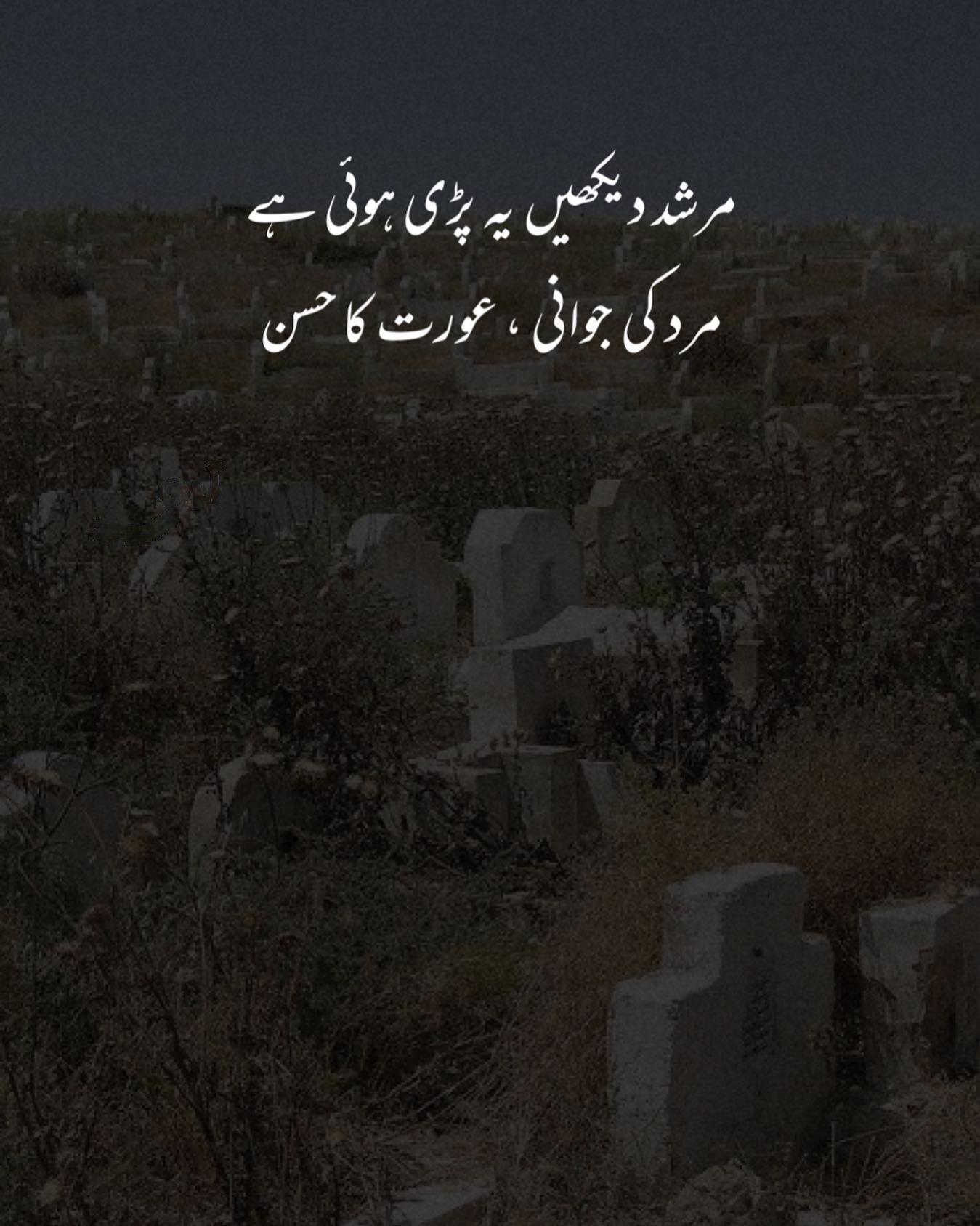 Murshid Dekhen Yeh Parri Hia Mard Ki Jawani Aurat Ka Husn Aesthetic Poetry Poetry Lines Aesthetic Words