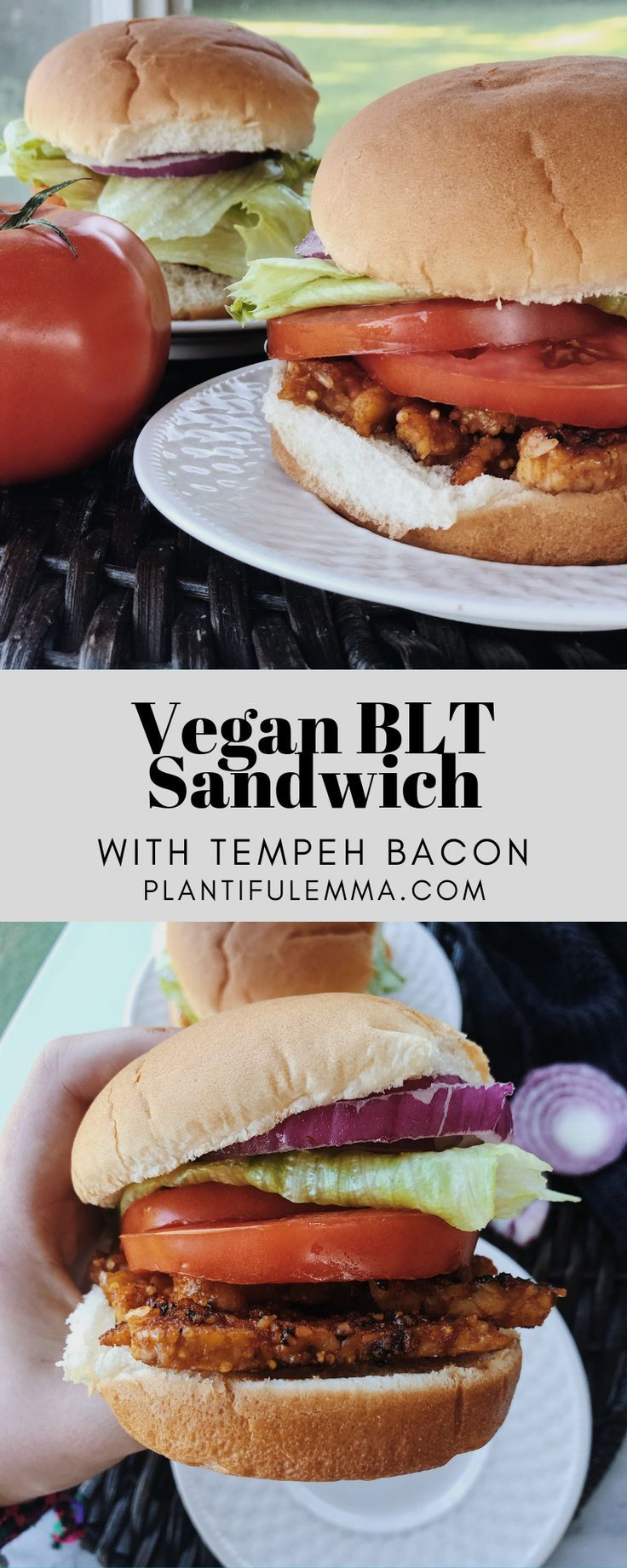 The Best Vegan BLT Sandwich  BLT sandwiches used to be my all-time favorite. Anytime we would stop