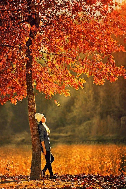 Pin By Forever Happy On Autumn Colors Pinterest Autumn