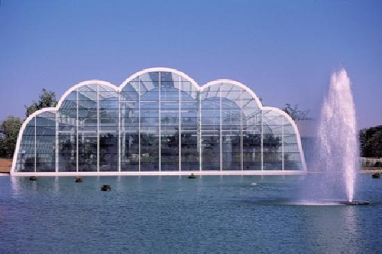 6e6a5875c9588109a066033048cb9dab - St Louis Botanical Gardens Butterfly House
