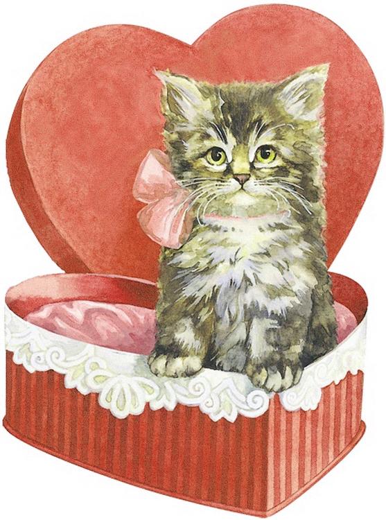 Vintage Valentine Cat Valentine S Day Vintage Valentines