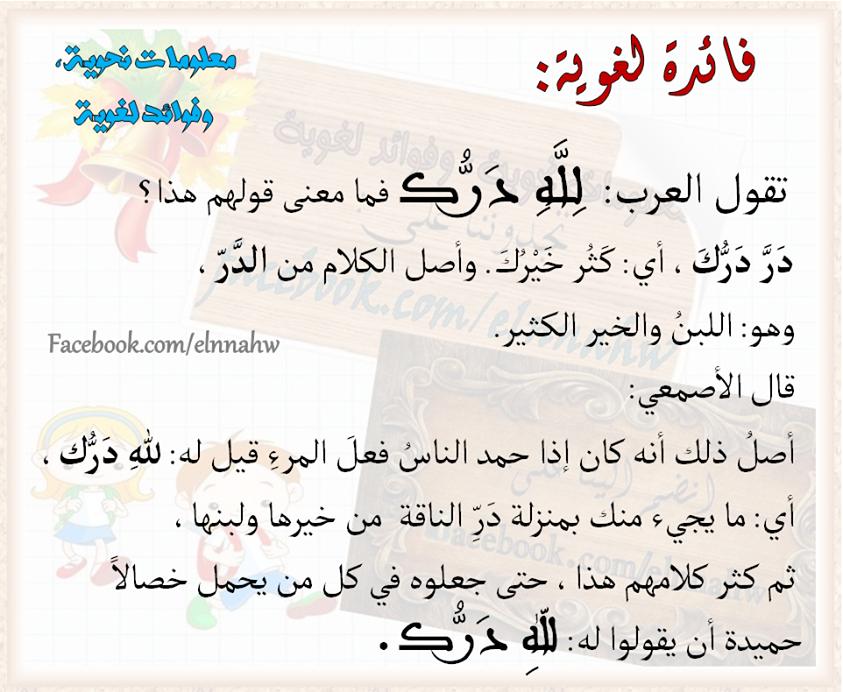 Timeline Photos معلومات نحوية وفوائد لغوية Facebook Beautiful Arabic Words Words Arabic Words