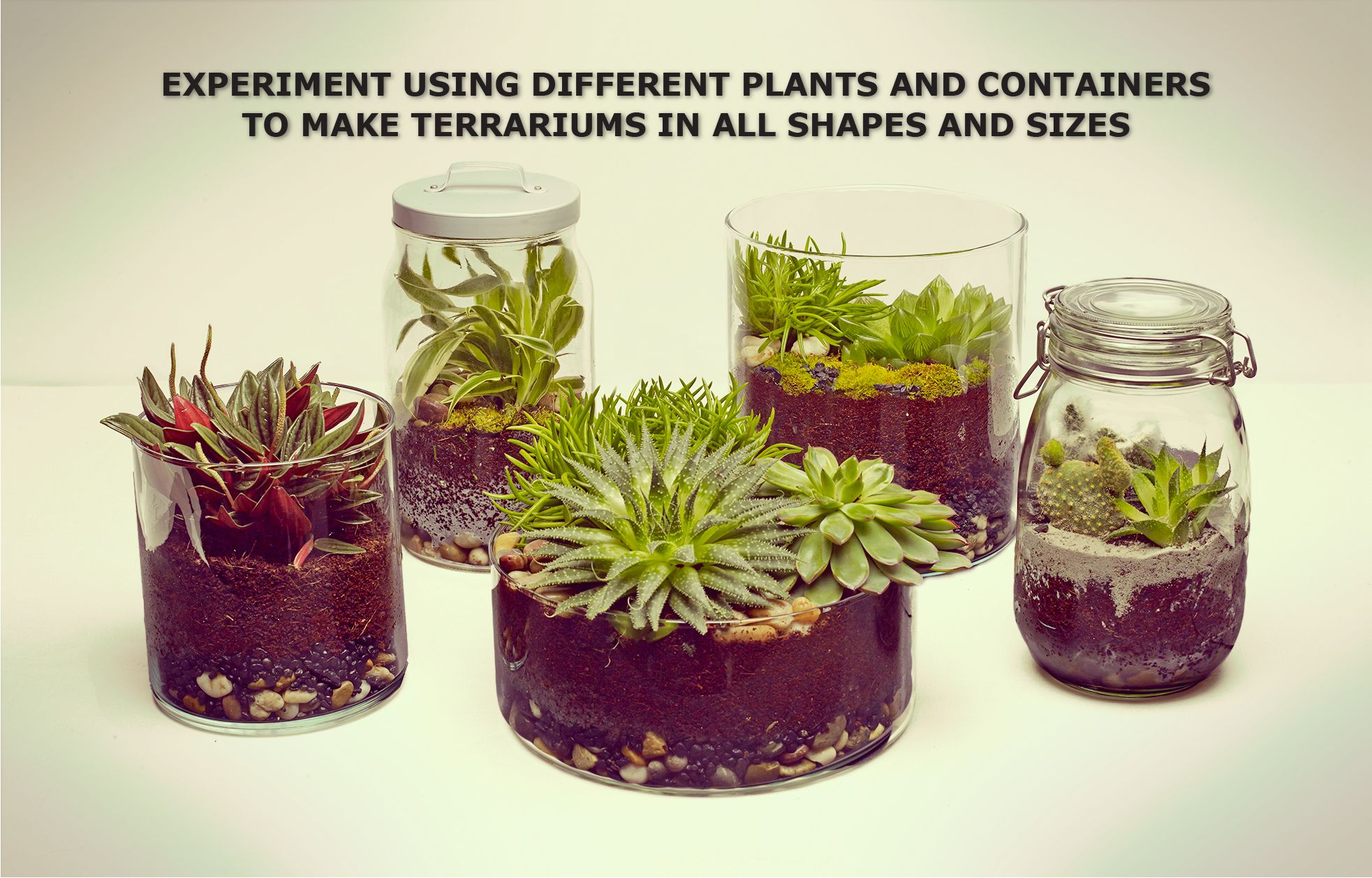 make your own terrarium - ikea need: sheet (sphagnum peat) moss