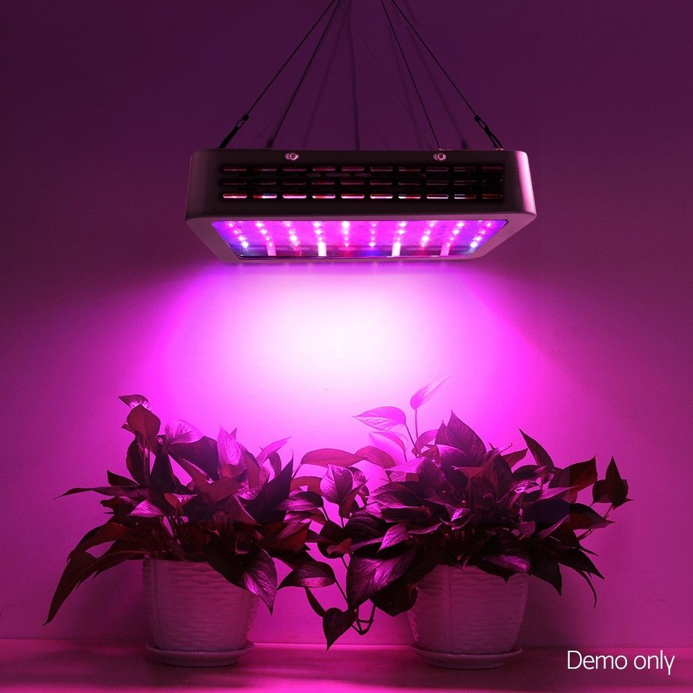 1000w Led Grow Light Full Spectrum In 2020 Grow Lights Led Grow Lights Plant Growth