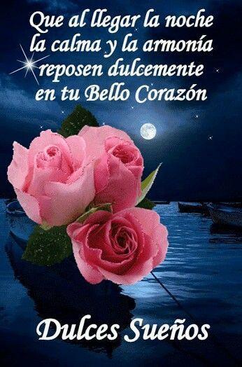 Buenas noches ruby pinterest buenas noches - Buenos dias buenas noches ...