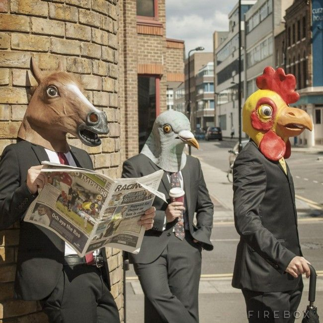 Animal-Masks-–-Horse-Pigeon-and-Chicken-Heads-650x650.jpg (650×650)