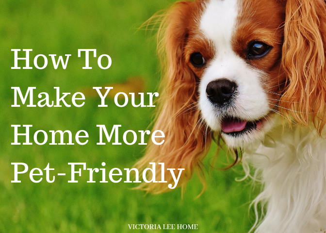 How To Make Your Home More Pet Friendly Training Your Dog Dog Training Dog Images