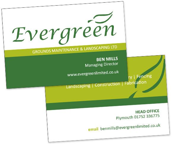 Evergreen Landscapes Project Overview Evergreen Landscape Landscape Projects Landscape