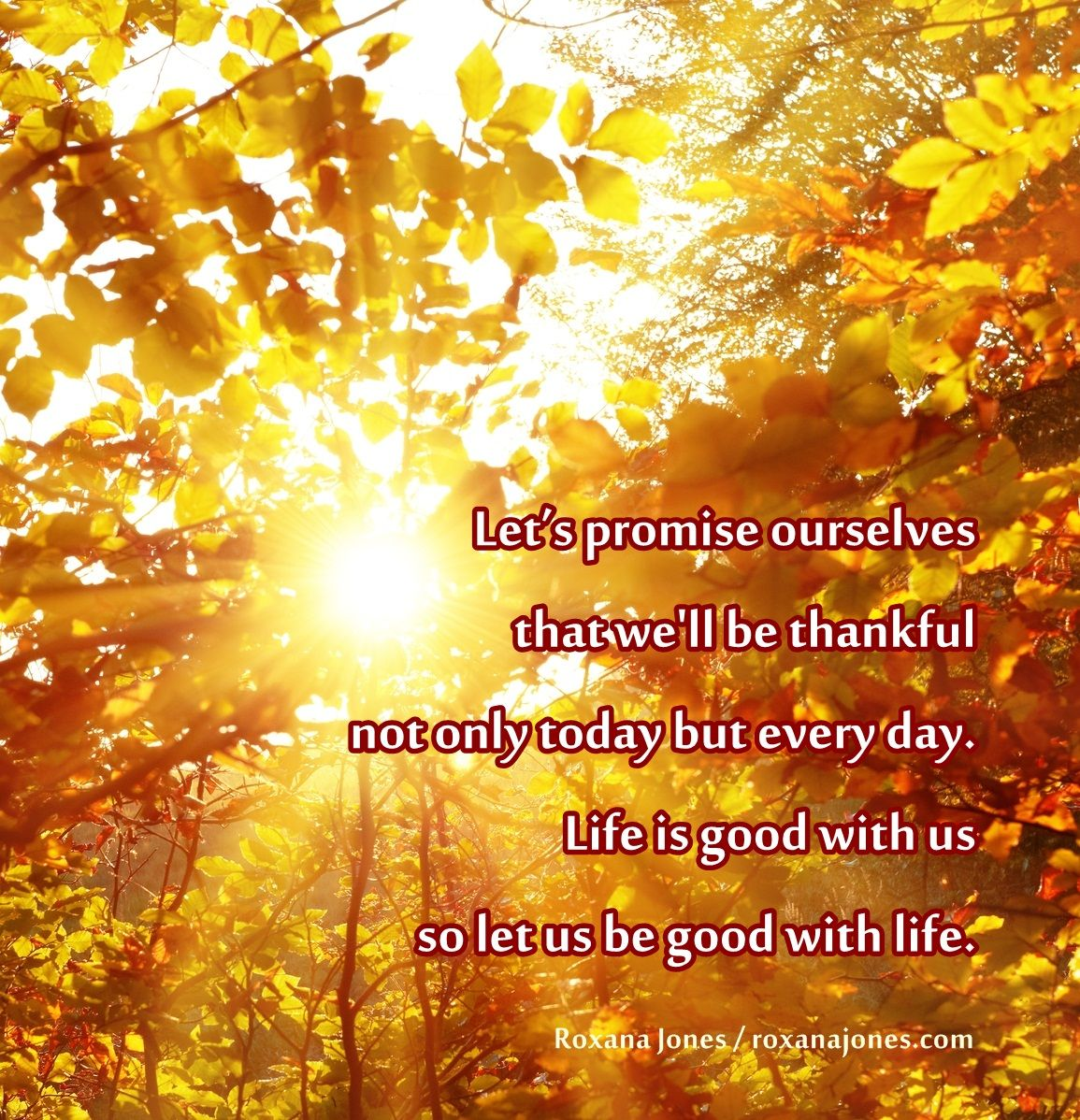 Famous Quotes For Thanksgiving: Inspirational Quote: Happy Thanksgiving!