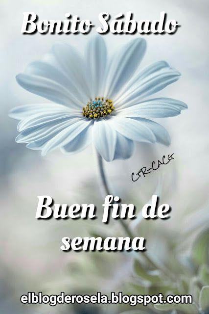 De Todo Un Poco Bonito Sábado Cartelitos Good Morning Happy
