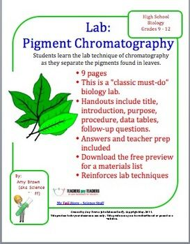 Leaf Pigment Chromatography Lab | Sun, Plants and Biology