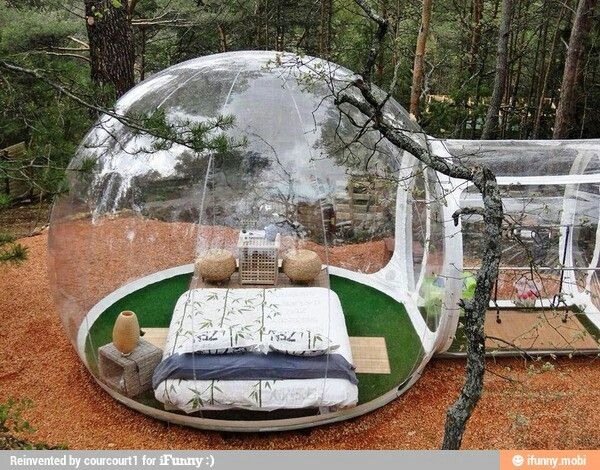 Imagine watching a storm or snow in this!!! I want!!!!