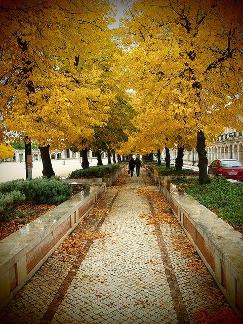 Qué bonito Aranjuez en Otoño