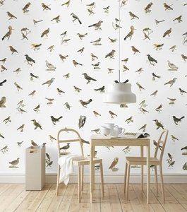 Behang Met Vogels 2016