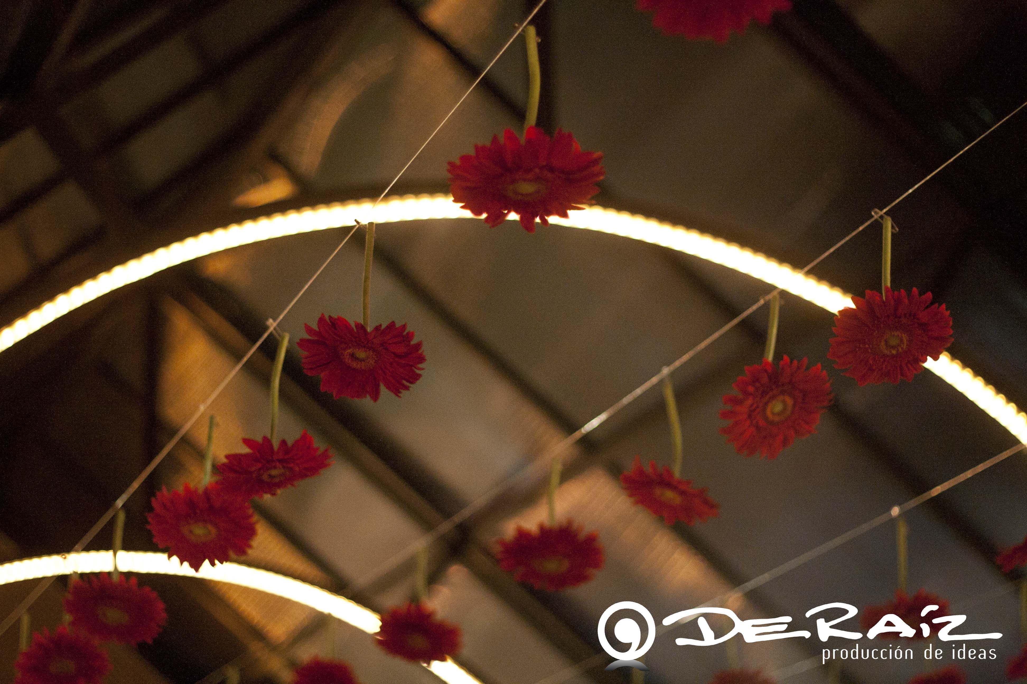 Instalación aérea de flores