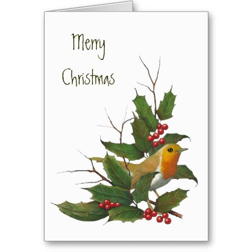 Merry Christmas, English Robin, Holly, Berries Card Holly berries