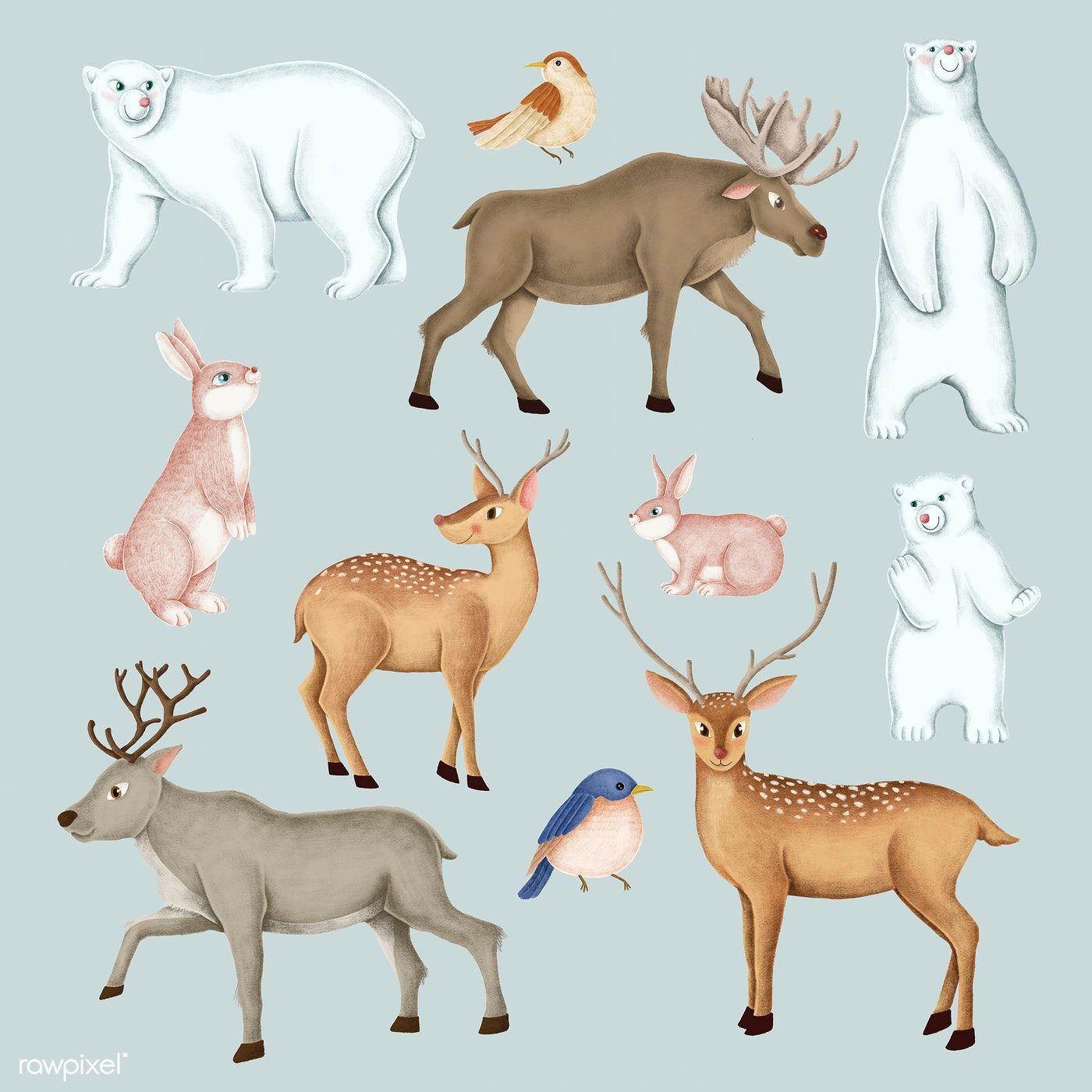 Download premium illustration of Handdrawn wild animal