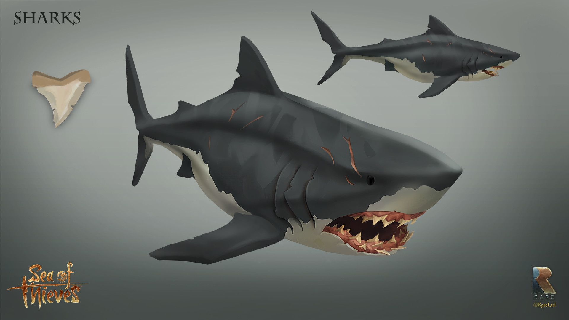 ArtStation Sea Of Thieves Sharks!, J Clapham Sea of
