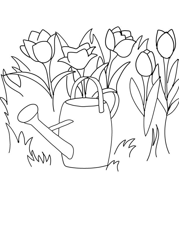 Free Printable Coloring Page Clipart Spring Tulips And A Watering