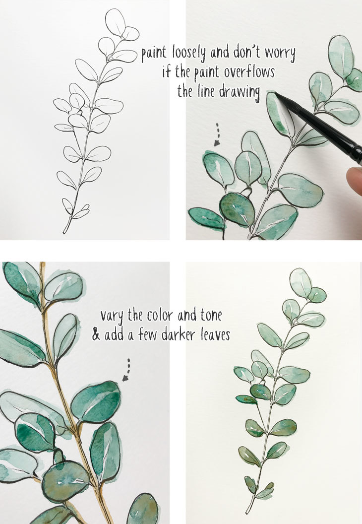 beginners-line-and-wash-eucalyptus-painting
