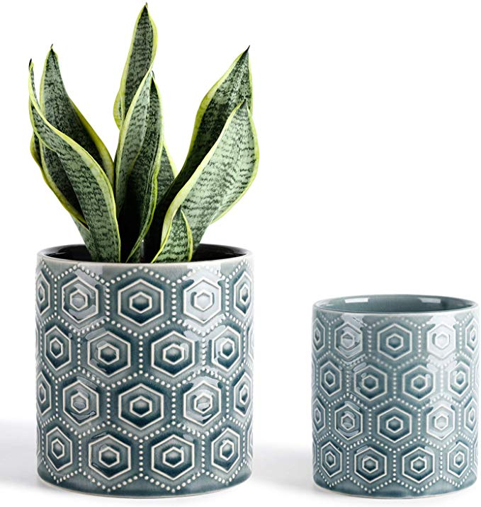 Amazon Com Greenaholics Hexagon Pattern Ceramic Planters 5 6 Inch Plant Pots With Drainage Hole Flower In 2020 Ceramic Planters Hexagon Pattern Container Plants